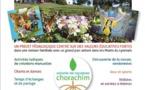Chorachim 2018 : une colo aux couleurs de Limoud !
